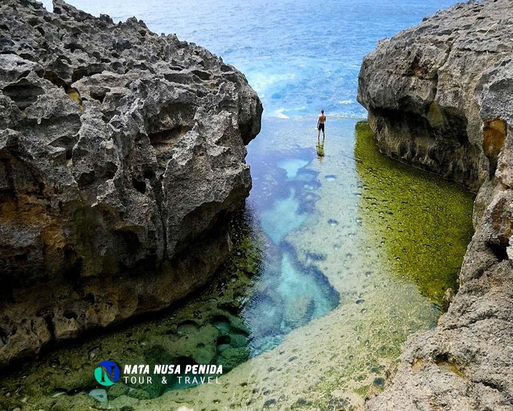 Nusa Penida Tour Snorkeling Private Day Trip Travel Bali Paket Honeymoon 4 Hari 3 Malam Update 2018 Angels Billabong