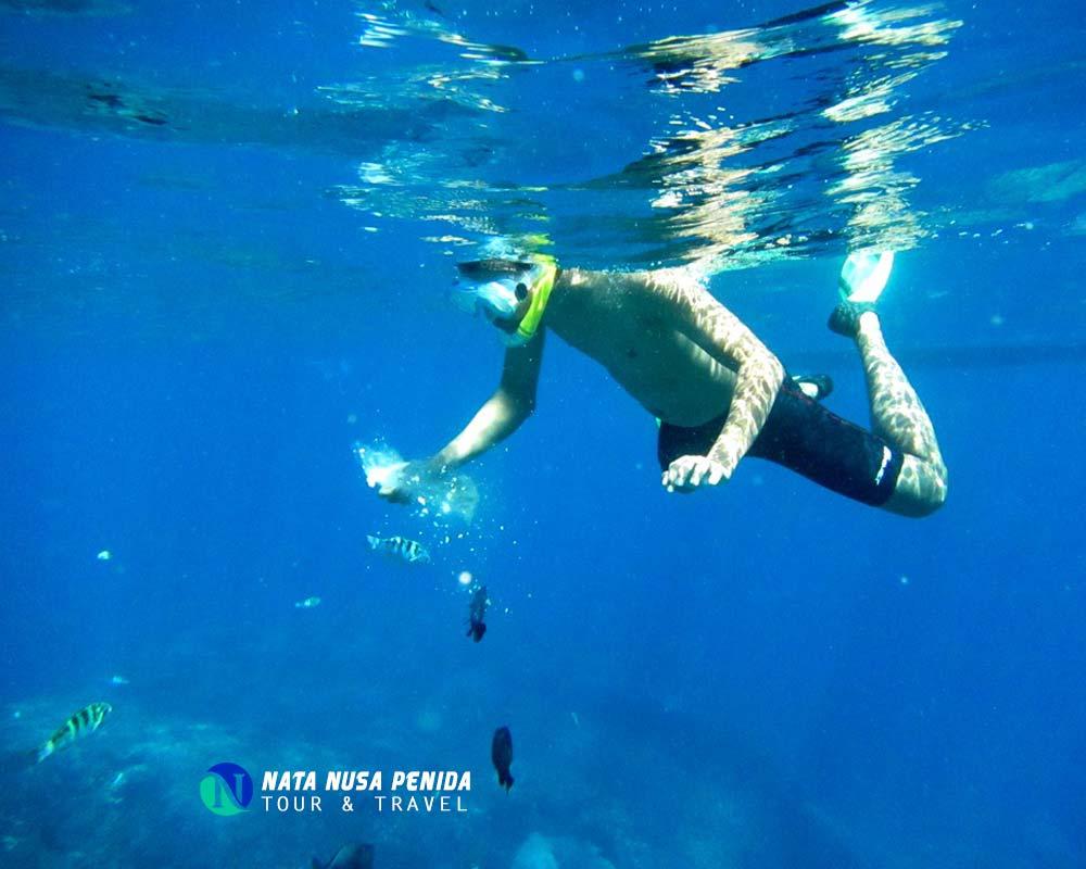 Wall Point Nusa Penida