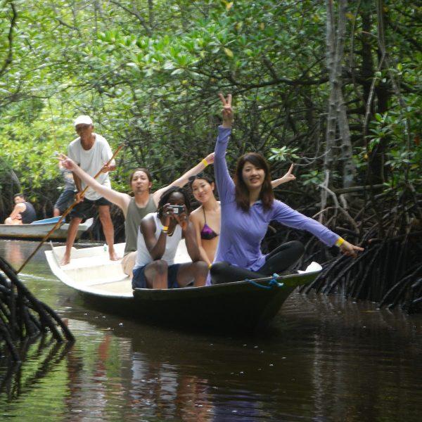 Hutan mangrove nusa lembongan island