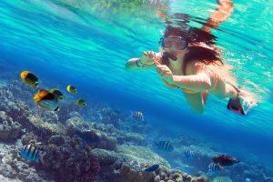 Paket Snorkeling + Tour Nusa Penida 1 Hari