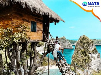 Nusa Penida Tour 2 hari 1 malam rumah pohon